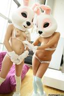 Cute Porn Bunnies Wanna Fuck - pics 02