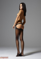 Gloria in Pantyhose Hot Stripping - pics 02