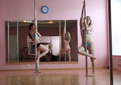 Sexy Amateur Babes Pole Dancing - pics 02