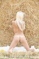 Platinum Blonde Pussy Sunflower - pics 05