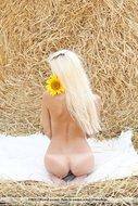 Platinum Blonde Pussy Sunflower - pics 06