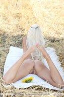 Platinum Blonde Pussy Sunflower - pics 11