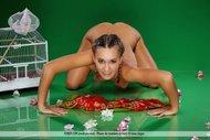 Gorgeous Brunette Babe Naked - pics 05