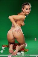 Gorgeous Brunette Babe Naked - pics 07