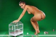 Gorgeous Brunette Babe Naked - pics 10