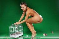 Gorgeous Brunette Babe Naked - pics 11