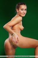 Gorgeous Brunette Babe Naked - pics 12