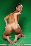 Gorgeous Brunette Babe Naked - pics 14
