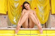 Big Tits Brunette Goddess Sofi - pics 01