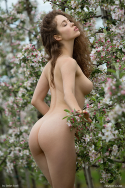 Sexy Brunette Vika A Apple Blossom - pics 06