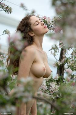 Sexy Brunette Vika A Apple Blossom - pics 07