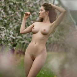 Sexy Brunette Vika A Apple Blossom - pics 11