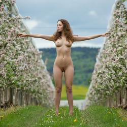 Sexy Brunette Vika A Apple Blossom - pics 12