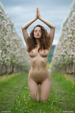 Sexy Brunette Vika A Apple Blossom - pics 14