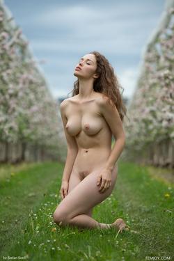 Sexy Brunette Vika A Apple Blossom - pics 15