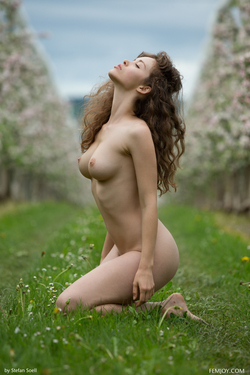 Sexy Brunette Vika A Apple Blossom - pics 16