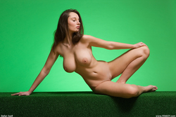 Big Boobed Ashley Framed in Green - pics 14