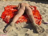 Busty Blonde Erica Nude Beach - pics 09