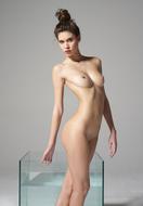 Sexy Nude Victoria R Aquarium - pics 02