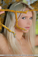 Naked Blonde Angel Katerina - pics 00