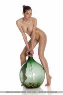 Indiana A Beautiful Oiled Nude - pics 10