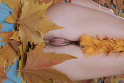 Milena D Dry Leaves on the Ground - pics 12