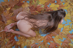 Milena D Dry Leaves on the Ground - pics 15