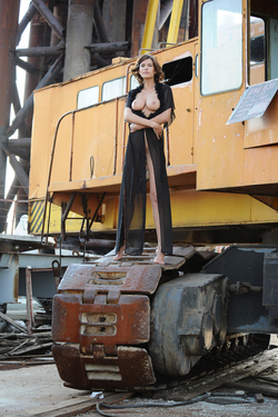 Beautiful Suzanna A Crawler Crane - pics 02