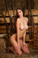 Big Boobed Babe - Perfect Body - pics 10