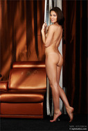 Sensual Nude Brunette Arianna - pics 04