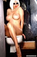 Big Boobed Blonde Tera Patrick - pics 14