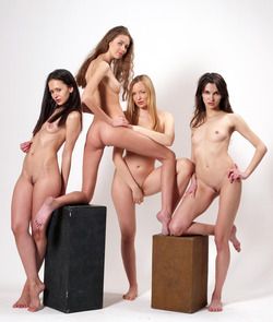 Four Slim Babes Naked Formation - pics 01