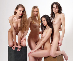 Four Slim Babes Naked Formation - pics 04