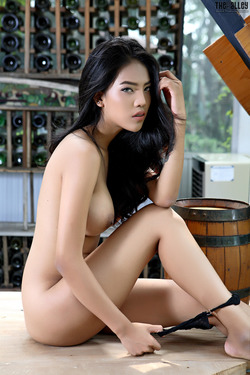 Beautiful Thai Babe Arya Stripping - pics 14