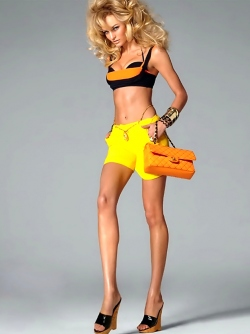 One of the Most Incredible Victoria's Secret Angels Candice Swanepoel